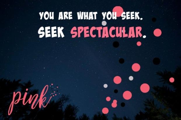 Seek Spectacular.